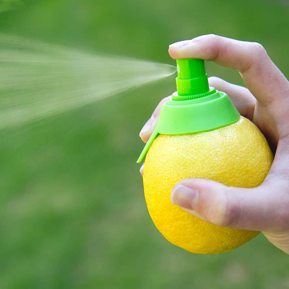 lemon-sprayer-00